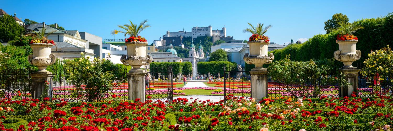 Roses in the Mirabell garden in Salzburg, with a view on the Hohensalzburg fortress | © Tourismus Salzburg / G. Breitegger