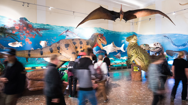 Saurian hall at the Museum of Natural History and Technology | © Haus der Natur Simmerstatter