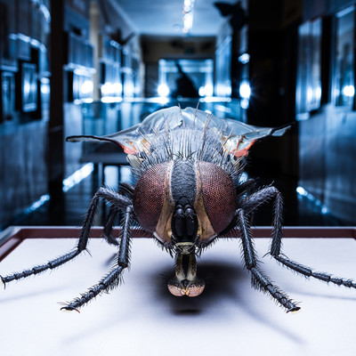 The world of the insects at the Museum of Natural History and Technology | © Haus der Natur Simmerstatter