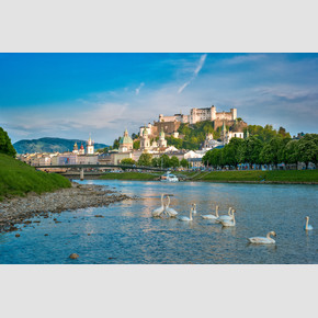 Salzach with swans and the historical old city with Hohensalzburg fortress | © Tourismus Salzburg, Foto: Breitegger Günter