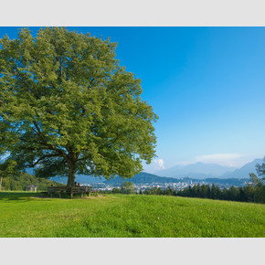 View from Maria Plain down to Salzburg | © Tourismus Salzburg